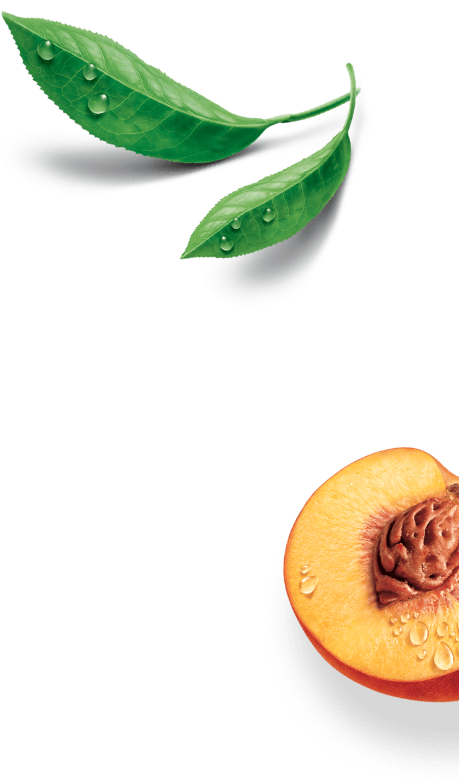 Estathé - Bio decorazione destra