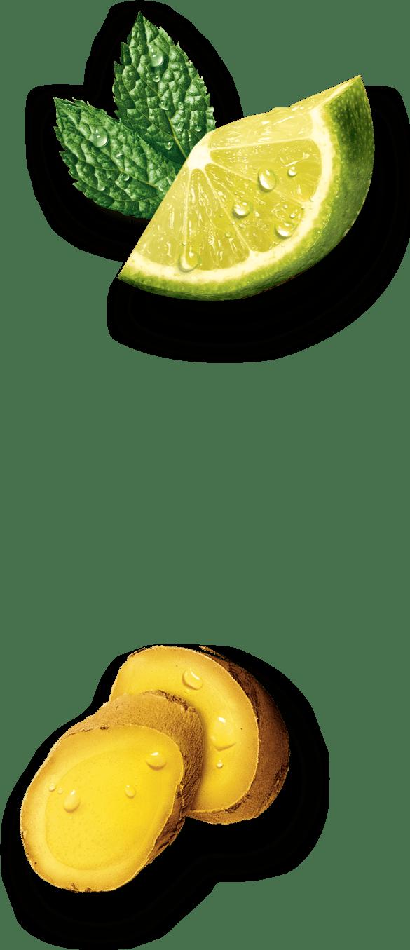 Estathé - Infusion Mix decorazione destra